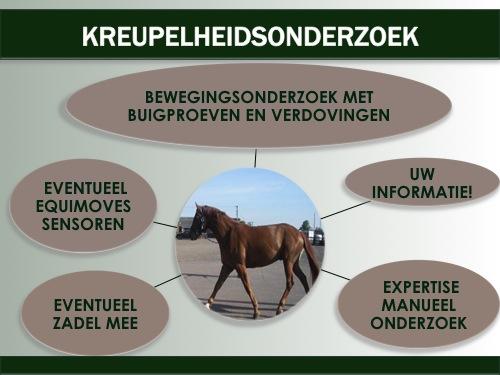 kreupel paard